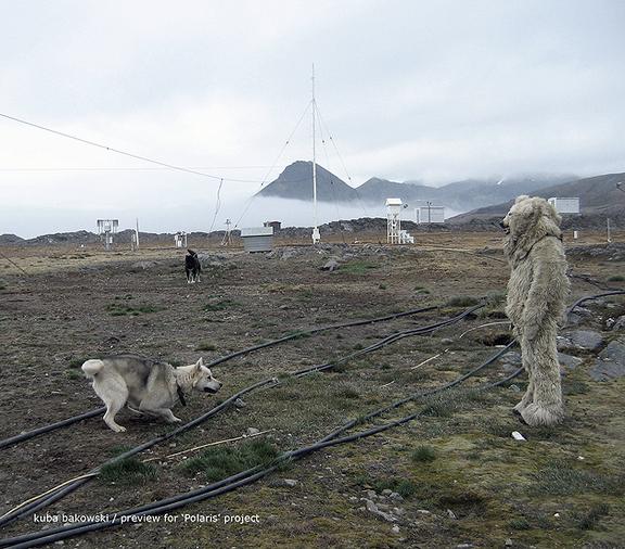 Na Spitsbergenie.jpeg